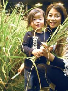 お母さんとの共同作業で初めての稲刈り