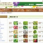 数十種類の野菜の育て方を掲載